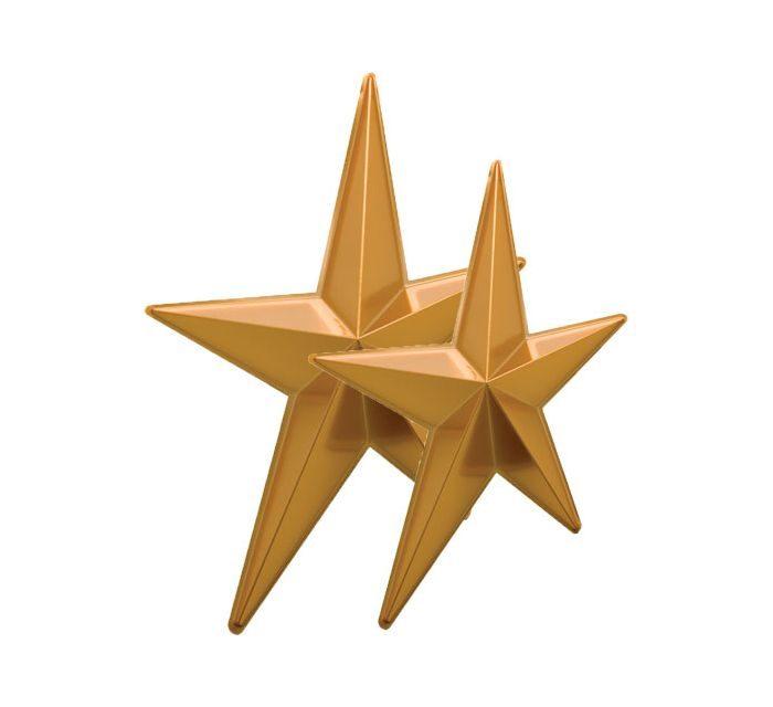 2 étoiles qui brillent(et pas qu'au foot)